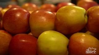 Buy Early Season Apples—Look for Minnesota Grown Apples at Your Local Market or Orchard