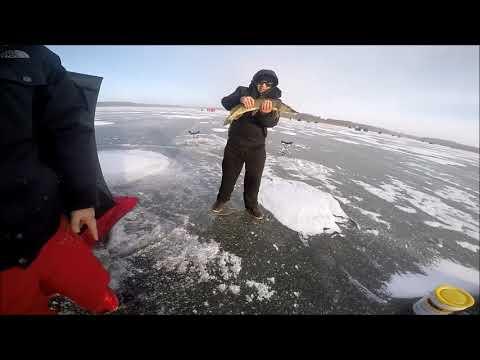 Pike City - 2018 Ice Fishing at Island Lake