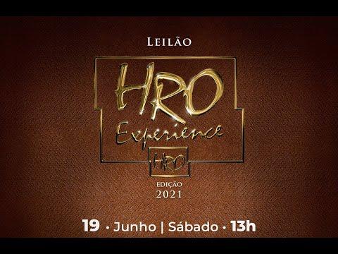 Lote 27   Bellíssima FIV HRO   HRO 5815 Copy