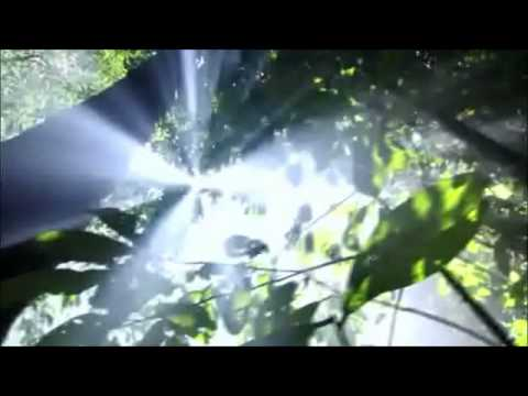 Клип Dmitry Bessonov - Equator