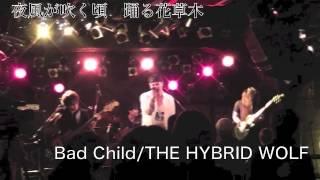 神奈川・東京を中心に活動している4ピースロックバンドTHE HYBRID WOLFです! よかったらライブに遊びにきてください! Vo.ナカヒロシ Gt.藤田康平 Ba.Cho.前田裕太 ...