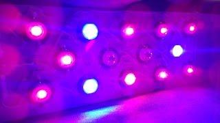 Светодиодные (LED) лампы для растений (фитолампы) своими руками (DIY)№18. Пошаговая сборка 30S ЭТАП1(, 2016-02-23T23:14:01.000Z)