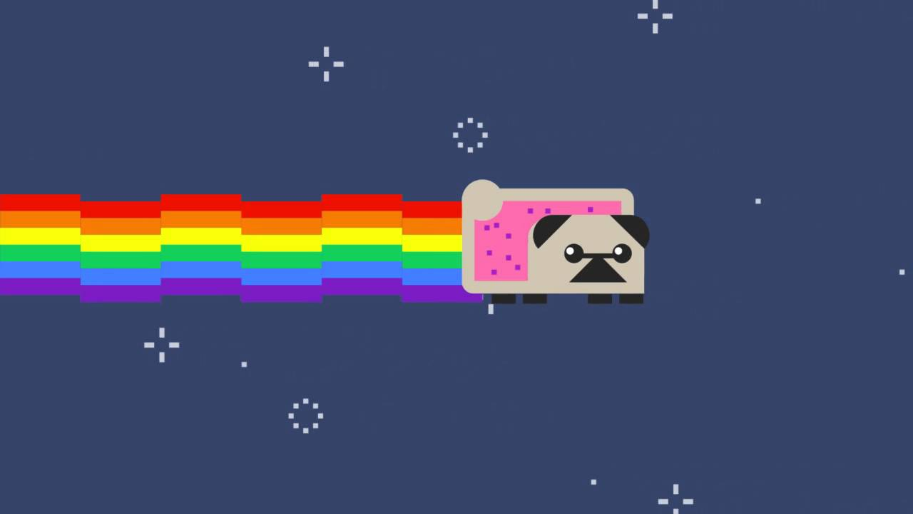 Cute Cat Moving Wallpaper Nyan Pug Youtube
