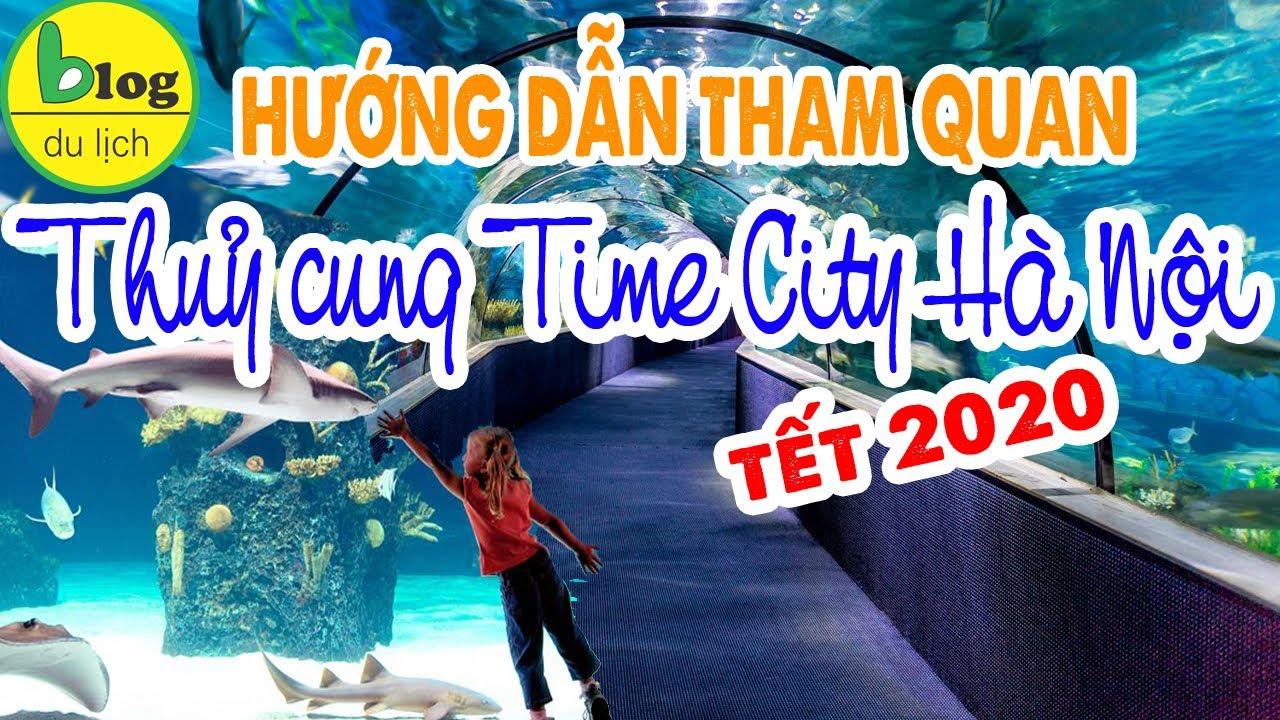 Du lịch Hà Nội: Tham quan thuỷ cung Times City 2020