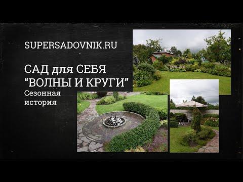 """Ландшафтный дизайн для всех: сад Дмитрия Патрикеева """"Волны и круги"""""""