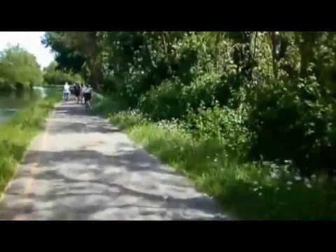 Camera Bike sulla ciclabile da Sesto Calende a Milano