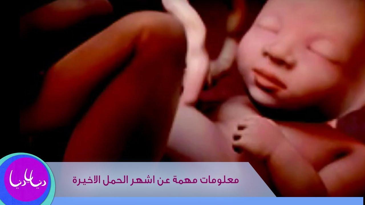 رولا قطامي - معلومات مهمة عن اشهر الحمل الاخيرة
