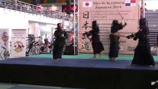 Kendo (Técnicas Básicas) - Mes Cultural Japonés 2014