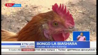 Bongo la Biashara: Tunaangazia jinsi wafugaji wa kuku wa kienyeji wanavyojizolea faida kemkem