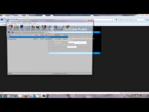 Punkbuster: disallowed program/driver error