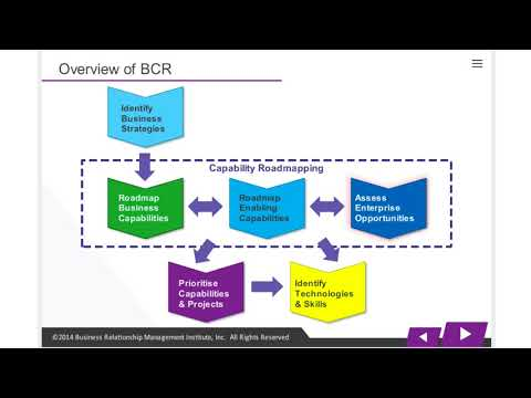 BRM M3L1 business capability - Business Relationship Management Course