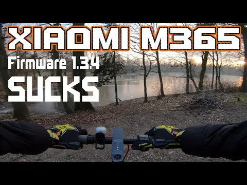 Best Tire for Xiaomi M365 LONG Ride & Gopro 6 4K ( Firmware M365 1.3.4  is BAD )