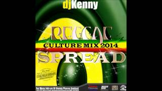 DJ KENNY REGGAE SPREAD CULTURE MIX OCT 2014