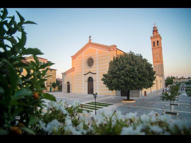 Mesha e Shenjtë, drejtëpërdrejtë nga Katedralja e Shkodrës .