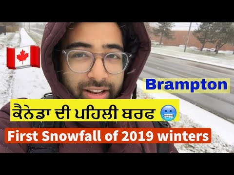 [My First Snowfall In CANADA 2019] | IMPORTANT INFORMATION! Shared On CANADIAN Weather!