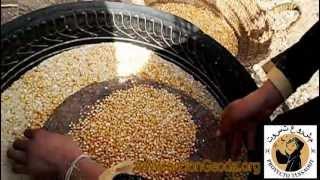 Venteando Maiz / Airing Corn