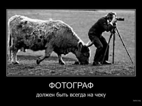 Хороший фотограф на вес золота))))