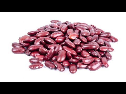 13 Important Health Benefits of Kidney Beans | Health And Nutrition