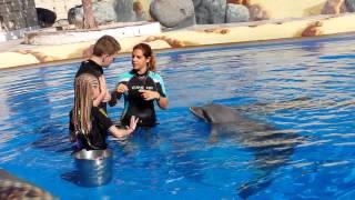 Papina delfin a Filip 01