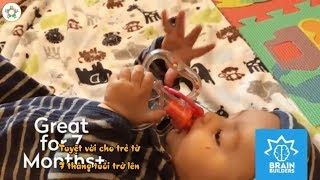Đồ chơi cho bé sơ sinh 7 tháng tuổi   Brain Builder