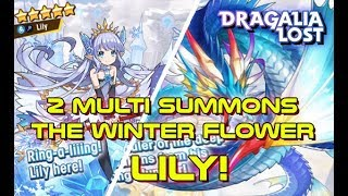 Dragalia Lost   New The Winter Flower Summons - Did We Get Lily?