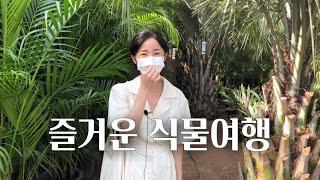 공기정화식물이 가득한 야자농장의 비밀 어쩐지 공기가 남…