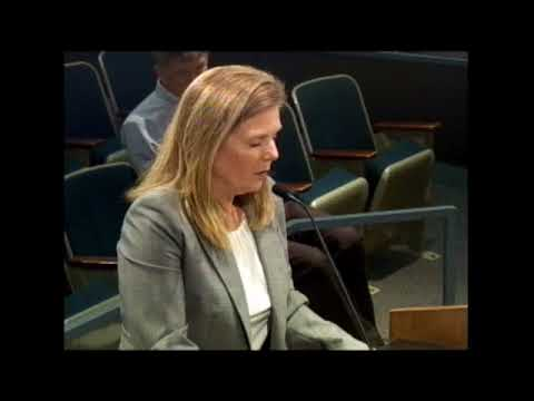 8-30-17 St. Louis County Council meeting