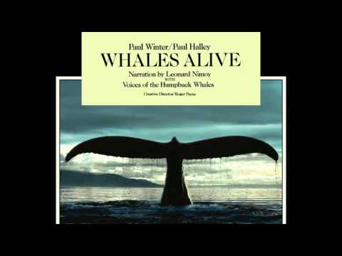Paul Winter & Paul Halley - Whales Weep Not! (Overture)