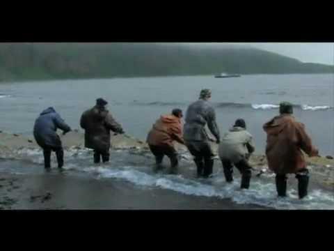 рыбалка и браконьеры видео на камчатке