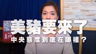 '20.09.14【世界一把抓】鍾沛君談新聞美豬要來了中央態度到底在哪裡