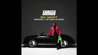 Shaggy - Supernatural ft. Stacy Barthe & Shenseea (Official Audio)