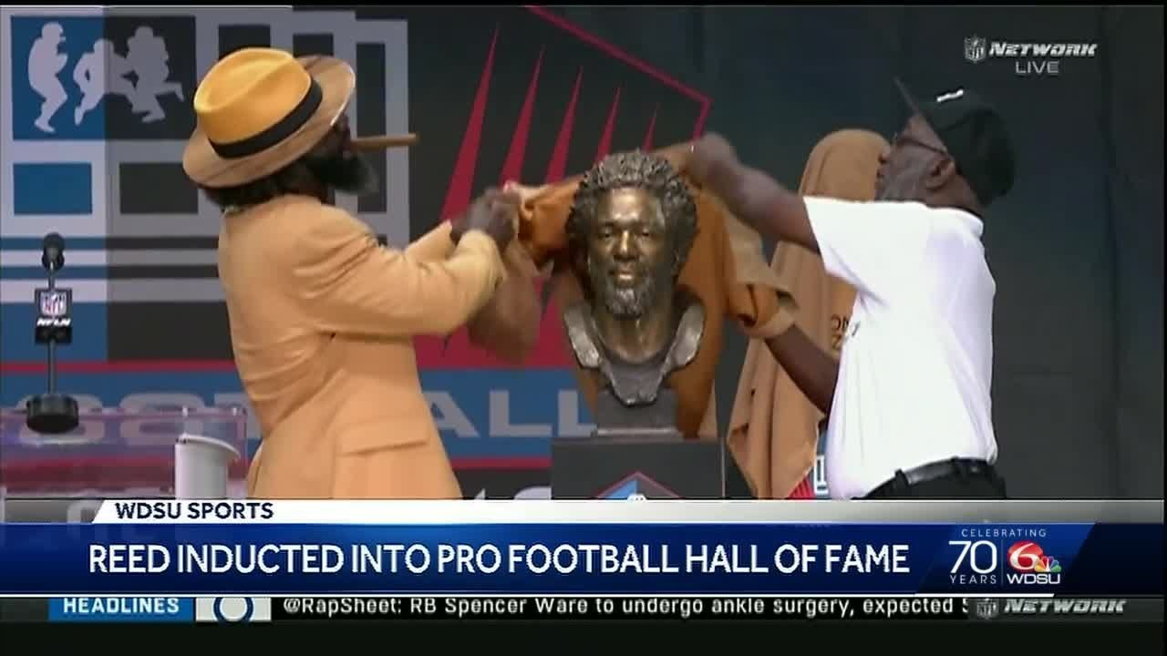 Ed Reed joins Pro Football Hall of Fame