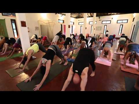 Ashtanga Yoga Led Primary Series with Petri Räisänen at Purp