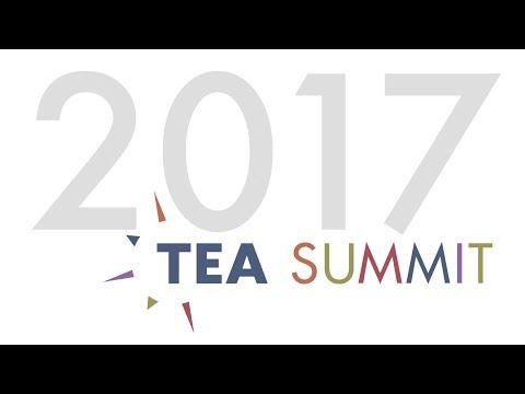 2017 TEA Summit Day 2 — Le Dernier Panache @ Puy Du Fou