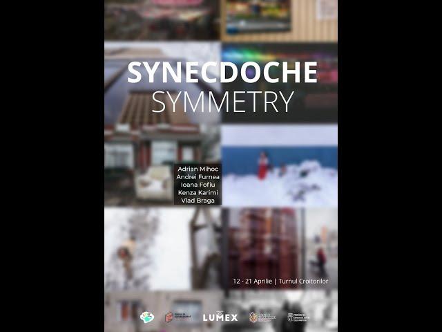 Synecdoche Symmetry - vernisaj online