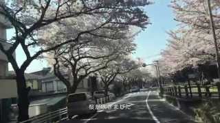 CANCION - 春風