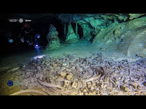 Archaeologists find fossils, Mayan relics in underwater cave