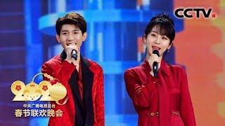 [2020央视春晚] 歌舞《再次相约二十年》 演唱:张韶涵 徐子崴 杨紫 王源(完整版)| CCTV春晚