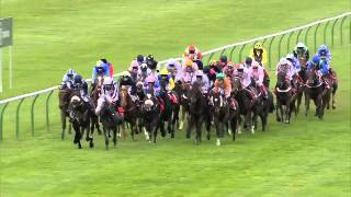 2013 Betfred Cesarewitch - Scatter Dice