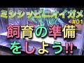 【ミシシッピニオイガメ】飼育 01 飼育の準備を始めよう‼︎