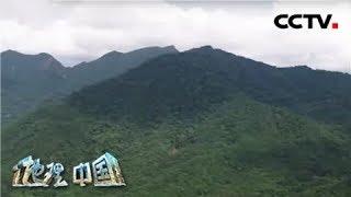 《地理·中国》 20200326 自然胜景·雨林探秘 4| CCTV科教