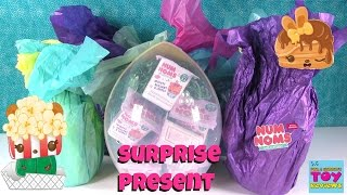 Num Noms Surprise Present Whats Inside Series 3 Plush Opening | PSToyReviews