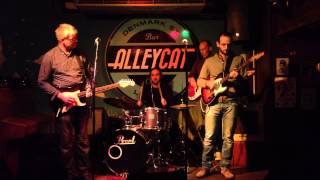Davide Sittinieri - Personal Manager (blues jam at the Alley Cat)