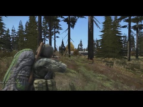 DayZ Interrupting battle at NWAF almost victorious