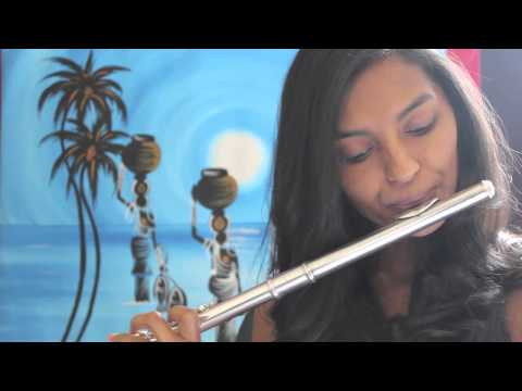 Titanic Theme - My heart will go on - Flute Cover