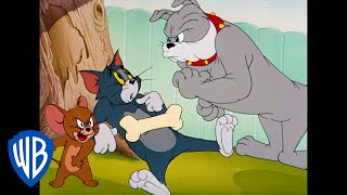 Tom & Jerry: But I Didn't Do It! thumbnail