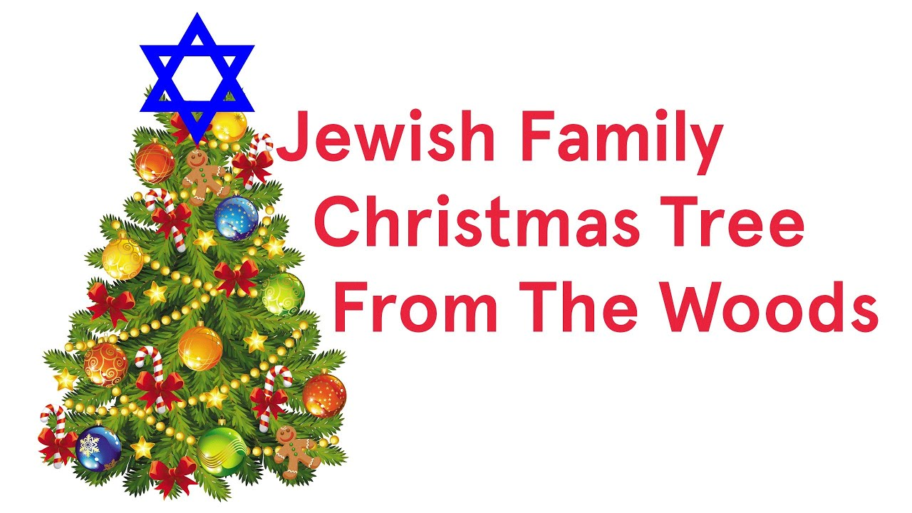 Jewish Family Christmas Tree From The Woods (Song A Day #1817) - YouTube