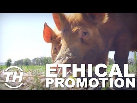 Top 4 Ethical Marketing | Ethical Promotion