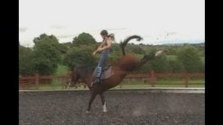 All New - Horse Bloopers 2013! [opalfruits99]