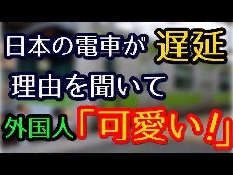 外国人「可愛すぎるだろ!」日本の電車の遅延理由を海外が大絶賛!「私の国ではありえない」【海外の反応】